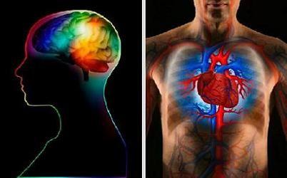 Phân biệt đột quỵ và đau tim để có cách xử lý đúng và kịp thời