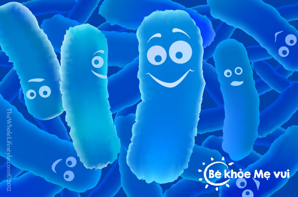 probiotics-trong-men-vi-sinh