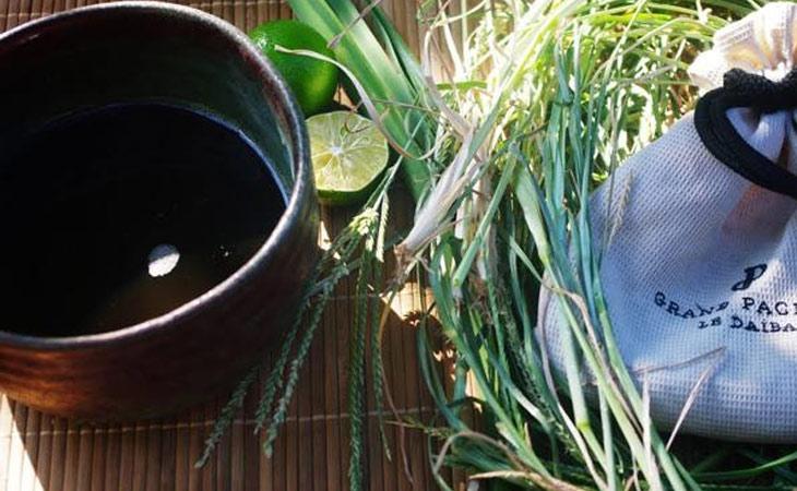 Cỏ mần trầu - thảo dược quen thuộc khi trị trĩ tại nhà