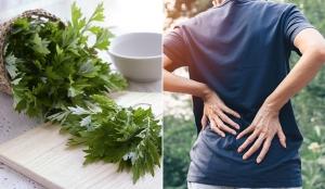 Ngải cứu, Bưởi và Chanh điều trị đau lưng hiệu quả