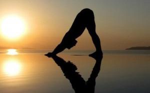 Tập yoga tăng sức đề kháng như thế nào?