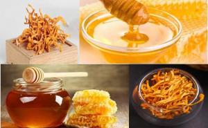 Cách ngâm đông trùng hạ thảo khô với mật ong