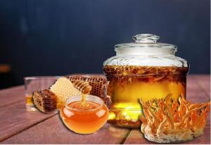 Đông trùng hạ thảo ngâm mật ong và những điều cần biết!