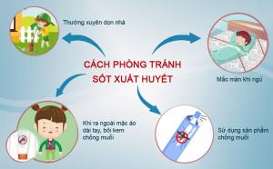 Biện pháp phòng chống bệnh sốt xuất huyết