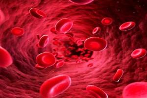 sốt xuất huyết tiểu cầu giảm bao nhiêu